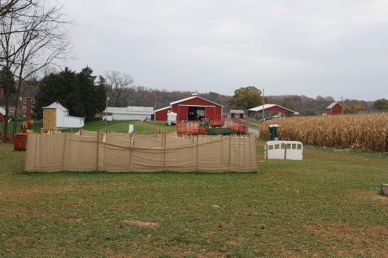 Gaver Farm