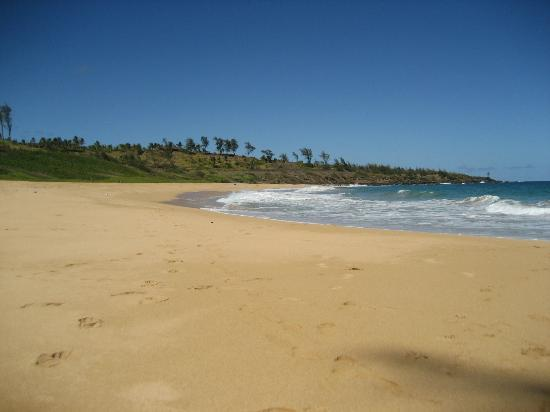 Kauai Path: Donkey Beach, currently at the end of the path.