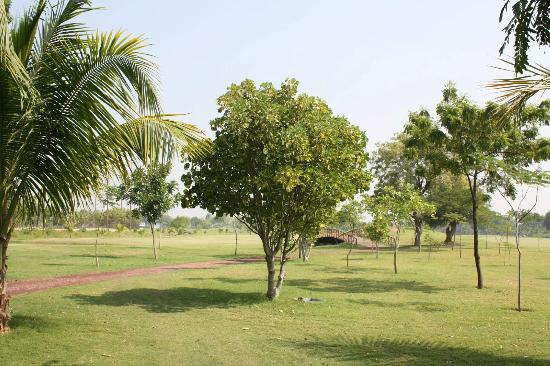 Gulmohar Greens - Golf & Country Club Ltd.: in the golf course