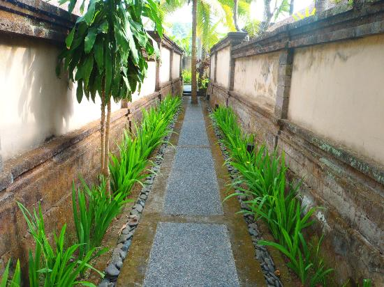 The Ubud Village Resort & Spa: walkway to rooms
