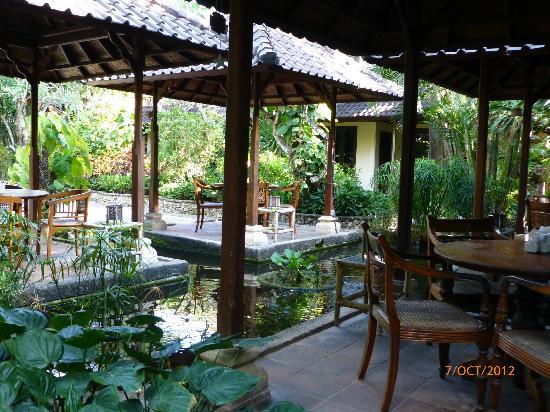 Hotel Puri Bambu: Vue du jardin