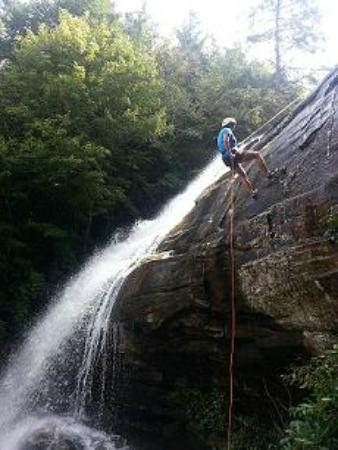Pisgah Forest, NC: On the way down!