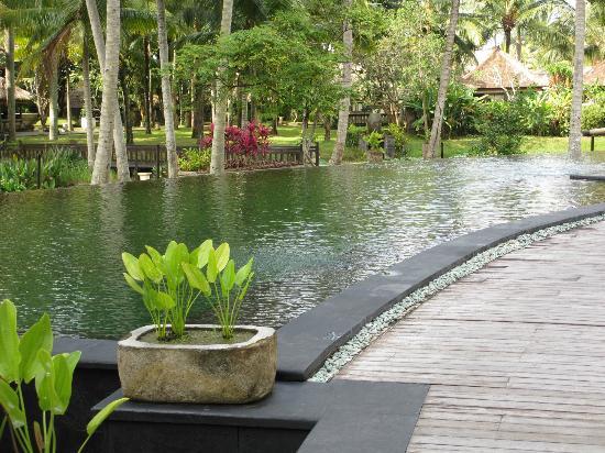 The Ubud Village Resort & Spa: the main pool