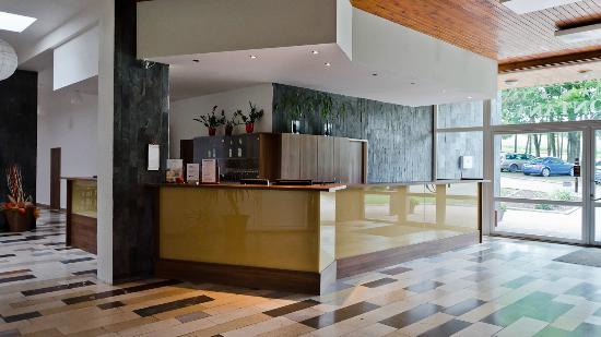 Hotel Fontana: Reception