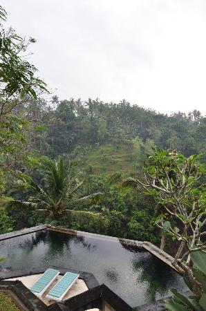 Beji Ubud Resort: green is everyvere