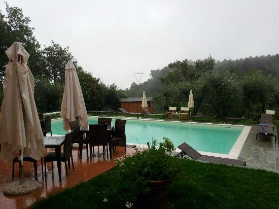 Le Contesse, My Italian Country House: PISCINA