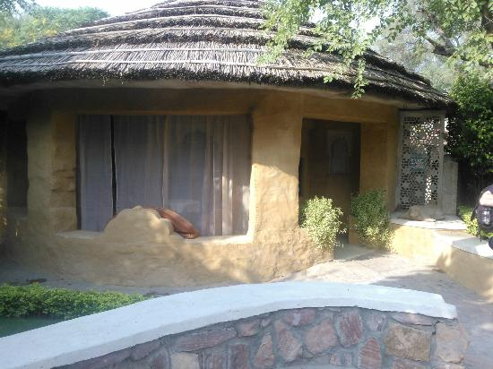 Ajit Bhawan: Exterior view of a cottage room - with curtained off patio area- cool and shady.