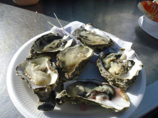 The Brighton Shellfish & Oyster Bar: huîtres