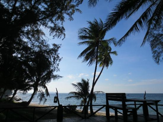 Rimba Resort: View from the bar