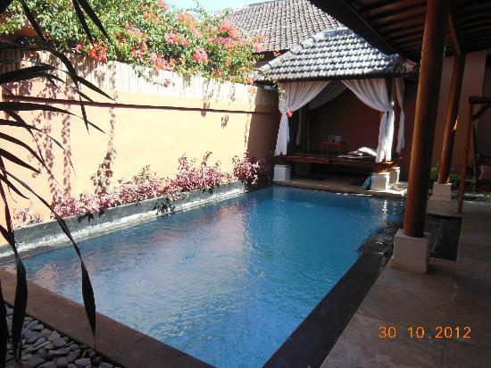 Lavender Villa & Spa: Private Pool