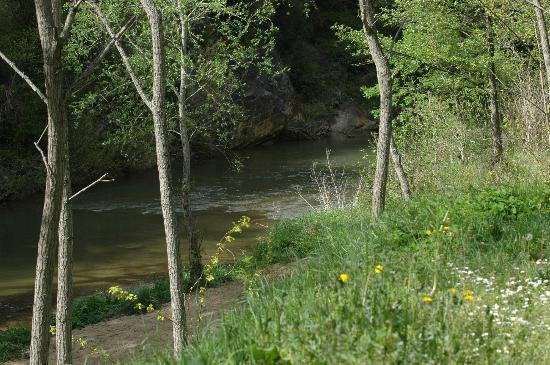 Au Coeur de Rennes: Le bord de la rivière, la Salz
