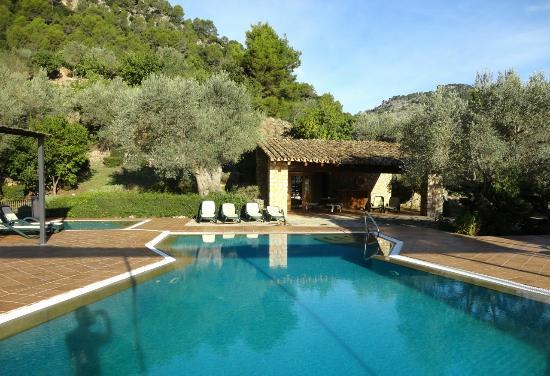 Finca Hotel Albellons Parc Natural: Swimming pool