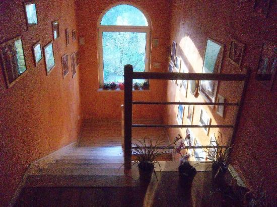 Hostel Krokodyl: escalier