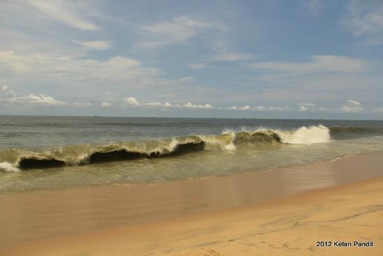 Marari Villas: Beach