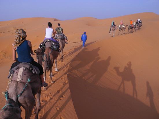 Riad Mamouche: camel trek