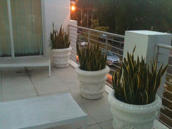 Sanctuary South Beach: Private sundeck off the Spa Penthouse