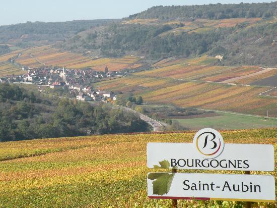 Au Clos Du Meix: View of the village