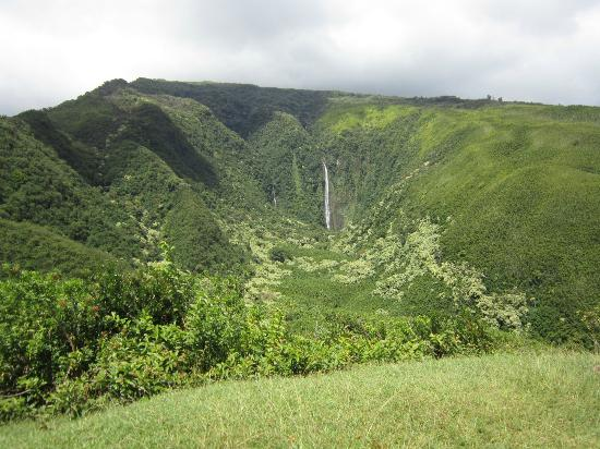Maui Stables : The falls you will see during the ride