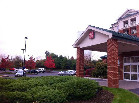 King Room Picture Of Hilton Garden Inn Hartford North Bradley Int 39 L Airport Windsor Tripadvisor