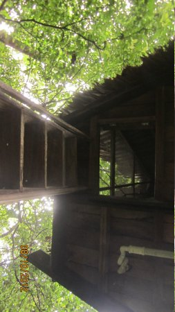 Reserva Natral Tanimboca : The trap door entrance to the larger cabin