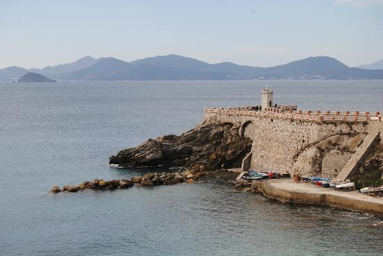 Seafood Restaurants in Piombino