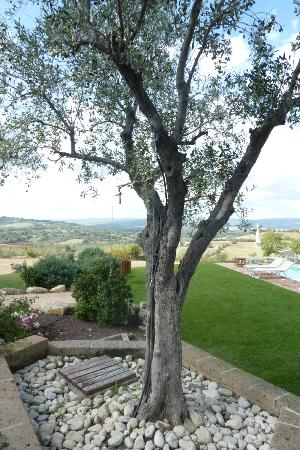 Saturnia Tuscany Hotel: A shower doesn't get more natural than this...notice the two shower heads in the trees.