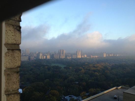 The Pierre, A Taj Hotel, New York: park view room