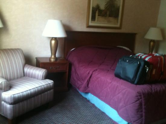 Piccadilly Inn Express: my room