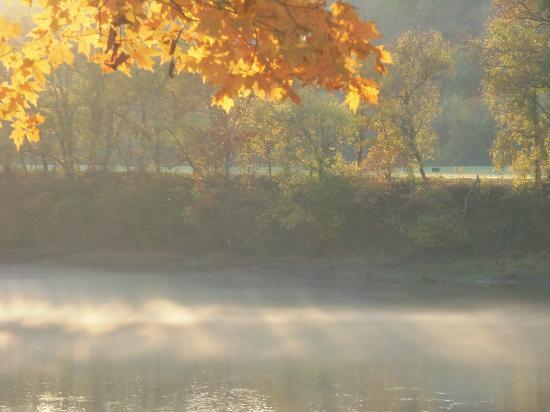 Gaston's White River Resort: Fall at it's best