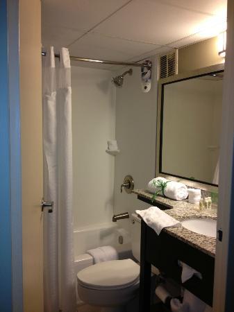 Holiday Inn Alexandria at Carlyle: Standard bathroom.