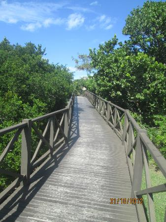 Iberostar Varadero: Walkway to beach