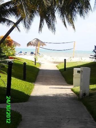 Ocean Maya Royale: View from the path from out villa/room