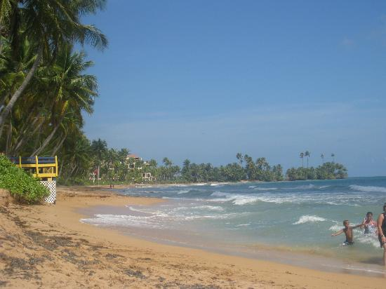 Park Royal Puerto Rico at Club Cala: beach