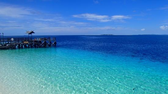 The Reef Dive Resort: beautiful!