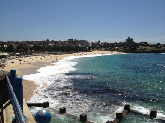 Crowne Plaza Hotel Coogee Beach - Sydney: Coogee beach from 5 min walk from hotel