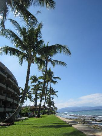 Paki Maui Resort: hotel and grounds
