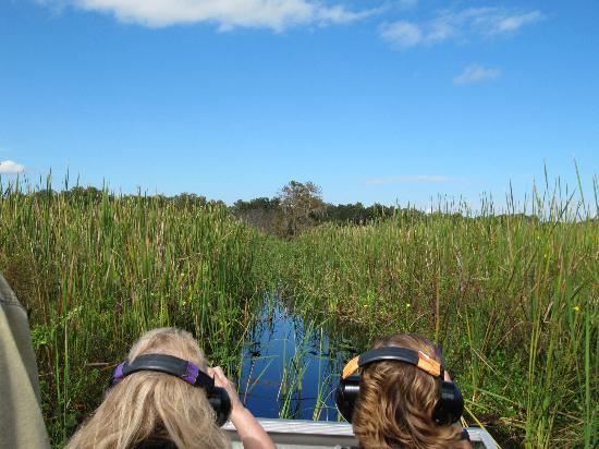 Alligator Cove Airboat Nature Tours: Tour