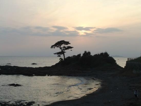 Tateishi Park: 立石公園3
