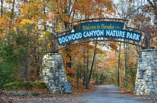 Entrance to dogwood canyon in the fall picture of for Dogwood canyon