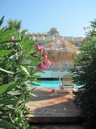 Blue Sea Beach Resort: Бассейн.