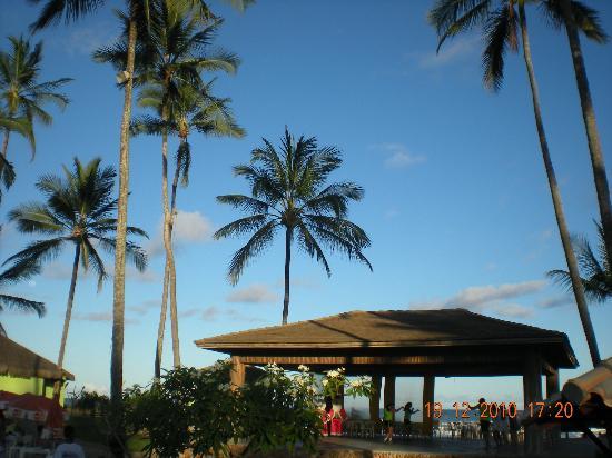 Cana Brava All Inclusive Resort: Sol da Bahia mas os coqueirais ajudam muito