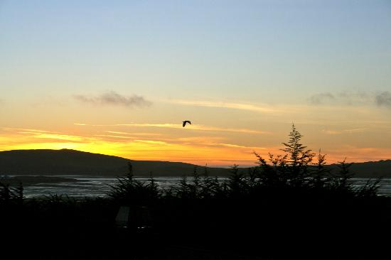 Bodega Bay Lodge: This was sunset view from our room.