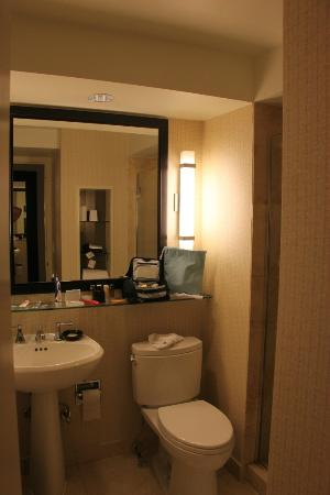 Hyatt Regency Washington on Capitol Hill: The tiny bathroom