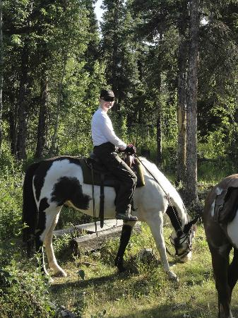 写真Denali Horseback Tours枚