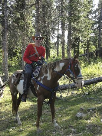 Denali Horseback Tours: All packed up and ready to go . .