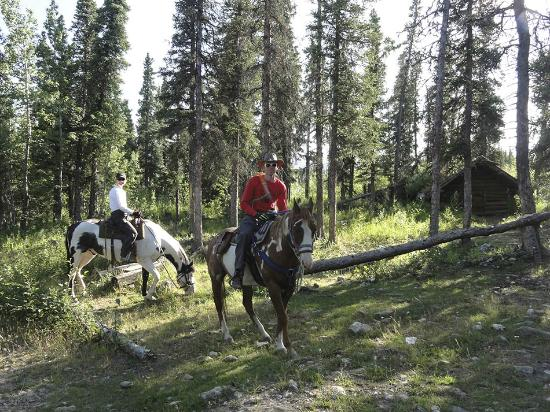 Denali Horseback Tours: Horseback riding tour in Denali with Ivana