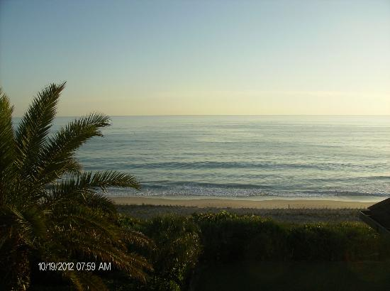 Disney's Vero Beach Resort: EARLY MORNING