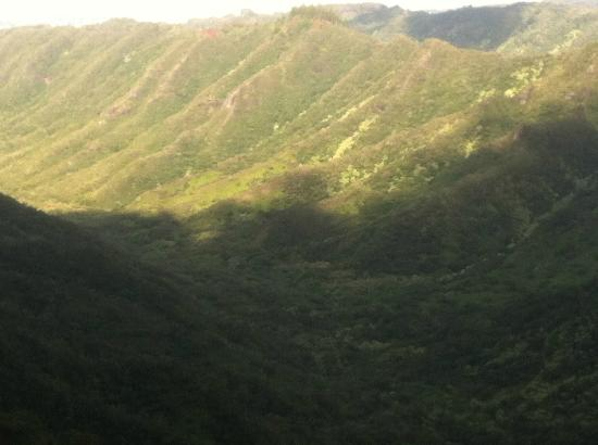 Tripler Ridge: More Scenery