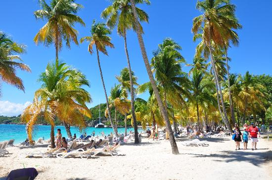 Club med guadeloupe reviews