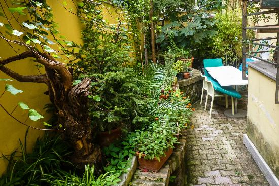 Beehive garden picture of the beehive rome tripadvisor for The beehive rome